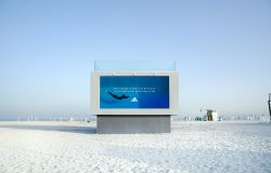 Jack Morton's swimmable billboard, constructed in Dubao for Havas and Adidas